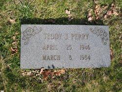 Teddy J Perry