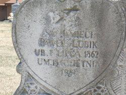 Paul A. Lubik