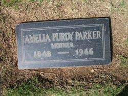 Amelia Emma Millie <i>Purdy</i> Parker
