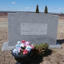 Walter E Allen, Jr