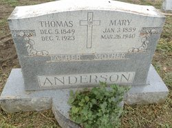 Mary I <i>Schneider</i> Anderson