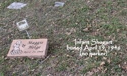 Infant Shugart