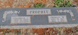 Elizabeth Catherine Bessie <i>Burk</i> Prophet