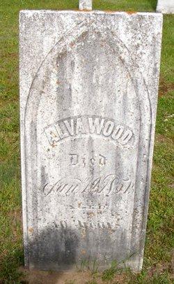 Alvah Wood