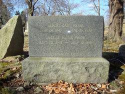 Albert Cady Prior