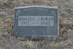 Adalton J. Borah