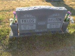 Leisel Radine <i>Smith</i> Fields