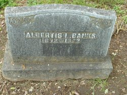 Albertis Leon Banks