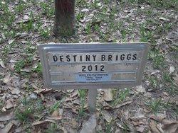 Destiny Briggs