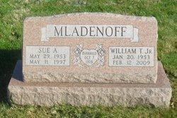 Sue A <i>Grundon</i> Mladenoff