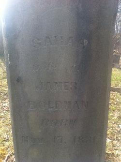 Sarah Jane <i>Holt</i> Boldman