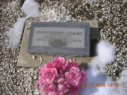 Terry Duane Adams