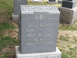 David Mathias Harman