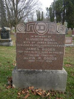 Alvin R Dodds