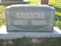 Vine Hawkins Adams