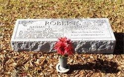 Nathan T Roberts
