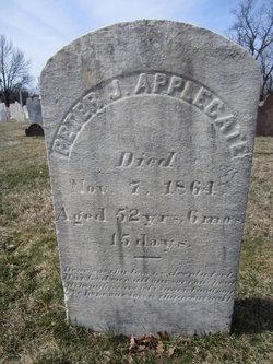 Peter J Applegate