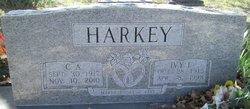 Ivy Lee <i>Haley</i> Harkey