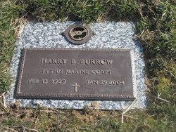 Harry Tennessee Burrow