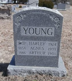 Agnes H Young