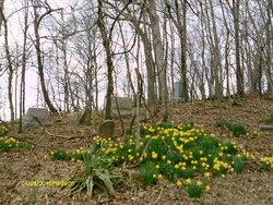 Snoderly Cemetery