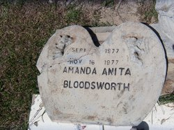 Amanda Anita Bloodsworth