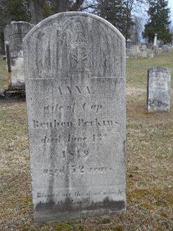 Anna <i>Steadman</i> Perkins