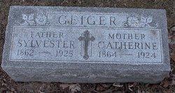Sylvester Fitzgerald Geiger