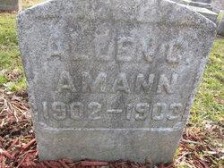 Allen C Amann