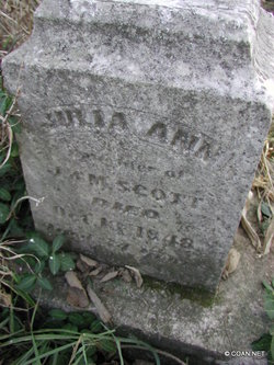 Julia Ann Scott
