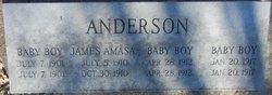 James Amasa Anderson