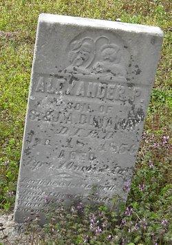 Alexander P Dunaway