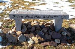 Dylan Nicholas Redwine