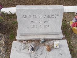 James Floyd Amerson