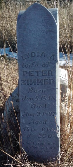 Lydia A Zimmer