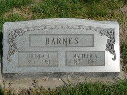 Lucinda J Barnes