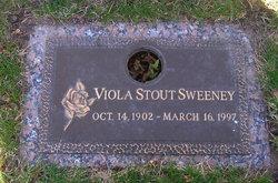 Viola <i>Stout</i> Sweeney
