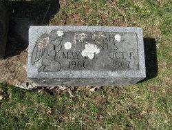 Deborah E. Brantis
