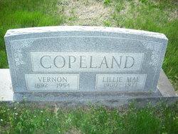 Lillie May <i>Park</i> Copeland
