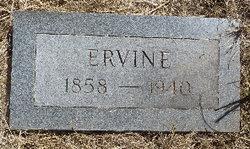 Ervine Bristol