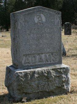 Louis Delancey Adams