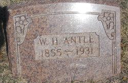 W H Antle