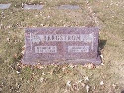 George D Bergstrom