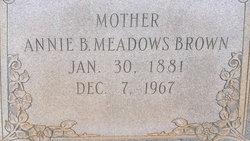 Annie B <i>Meadows</i> Brown