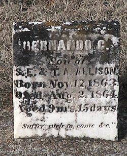 Hernando C. Allison