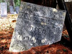 Daniel Andrews, Jr