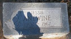 Jessie Antwine