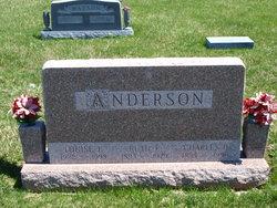 Louise E Anderson