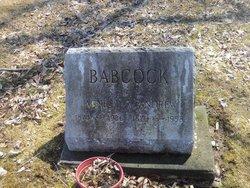 Agnes B. <i>Barber</i> Babcock