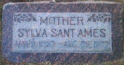 Sylva <i>Sant</i> Ames